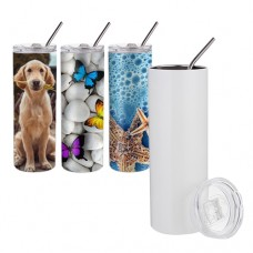 20oz Stainless Steel Tumbler with Straw & Lid